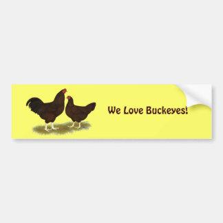 Buckeye Chickens Car Bumper Sticker