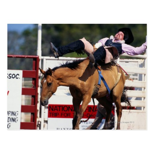 BUCKING BRONCO AT RODEO 3 POST CARD