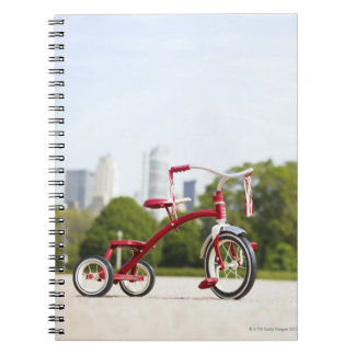 Buckingham Fountain, Chicago, Illinois, USA. Notebooks