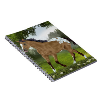 Buckskin Appaloosa Horse Notebooks