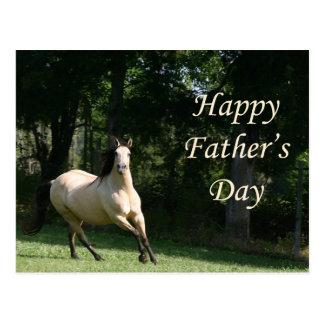 Buckskin horse Father's Day postcard