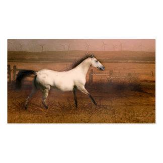 Buckskin horse pack of standard business cards