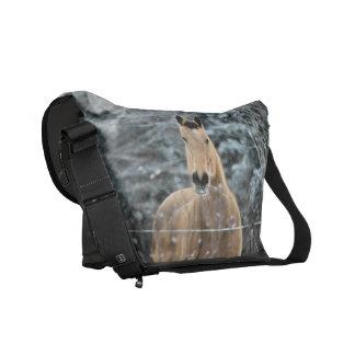 Buckskin Horse Winter Courier Bags