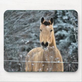 Buckskin Horse Winter Mouse Pads