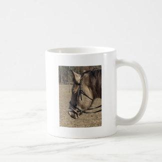 Buckskin Mare head study Mugs