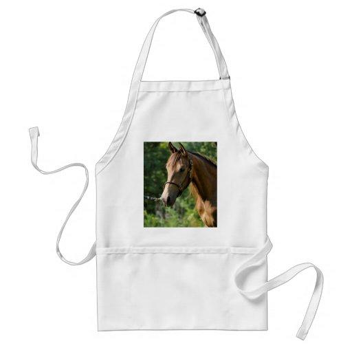 Buckskin Morgan Horse Aprons