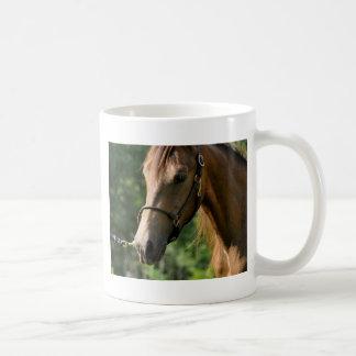 Buckskin Morgan Horse Basic White Mug