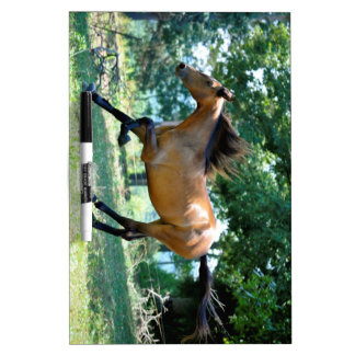 Buckskin Morgan Horse Dry-Erase Board