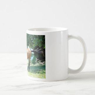 Buckskin Morgan Horse Mugs