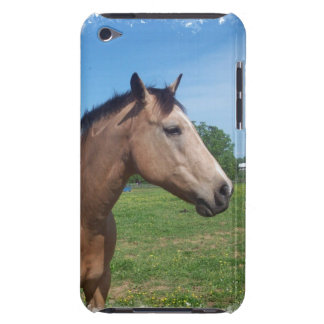 Buckskin Mustang iTouch Case Barely There iPod Covers