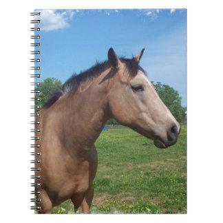 Buckskin Mustang Notebook