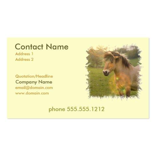 Buckskin Pony Busines Card Business Cards
