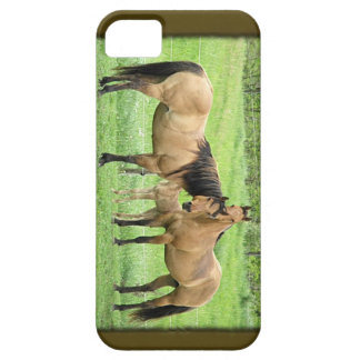 Buckskin Quarter Horses iPhone 5 Covers