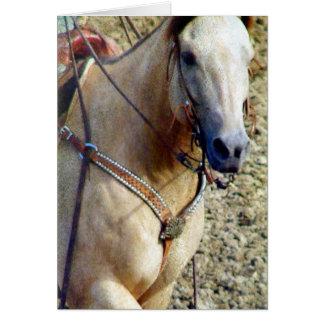 Buckskin Rodeo Horse Note Card