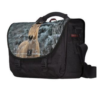 Buckskin Winter Bags For Laptop