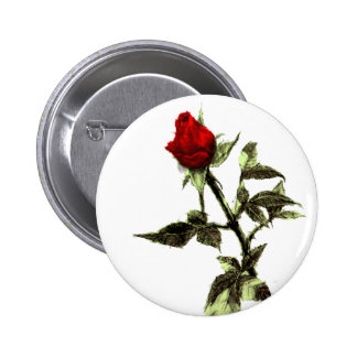 Bud of the red rose penciled 6 cm round badge