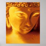 Buddha & COM Poster