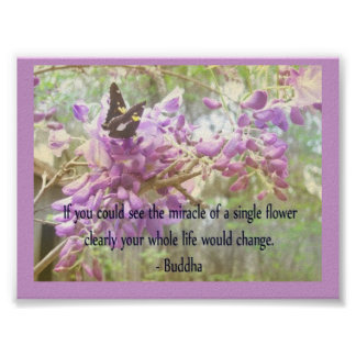 Buddha-If you could see the miracle of a single .. Poster