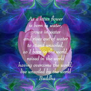 Buddha quotes cushions decorative throw cushions zazzle uk buddha quote lotus flower cushion mightylinksfo