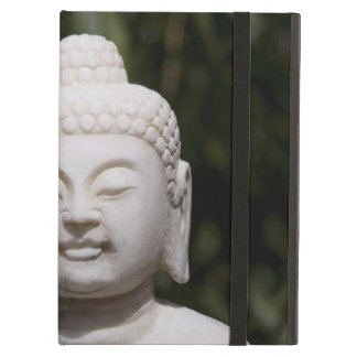 Buddha Statue iPad Air Cover