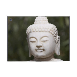 Buddha Statue iPad Mini Case