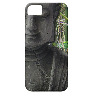 Buddha with bamboo iPhone 5 cases