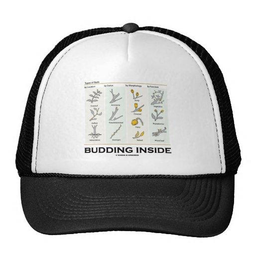 Budding Inside (Types Of Buds Biology / Botany) Trucker Hat
