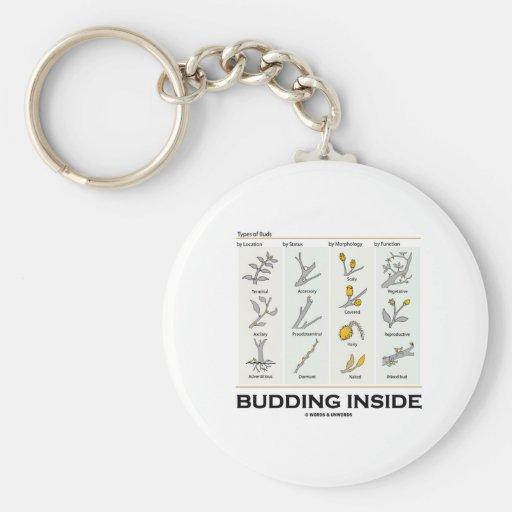 Budding Inside (Types Of Buds Biology / Botany) Key Chains