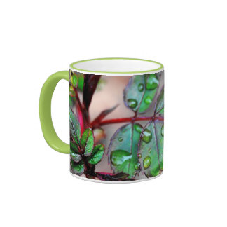 Budding Rose Leaves with Water Droplets Mug