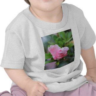 Budding Spring Rose Tee Shirts