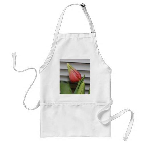Budding Tulip Aprons