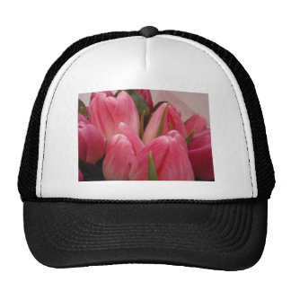 Budding Tulips Trucker Hats