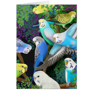 Budgerigars and Ferns Card