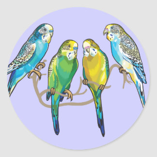 budgerigars classic round sticker