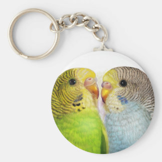 Budgerigars realistic painting key ring