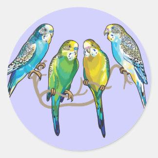 budgerigars round sticker