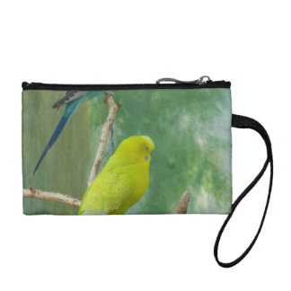 Budgie Coin Wallets