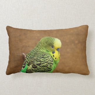 Budgie Bird Cushions