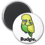 Budgie Budgie.