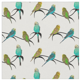 Budgie Frenzy Fabric (choose colour)