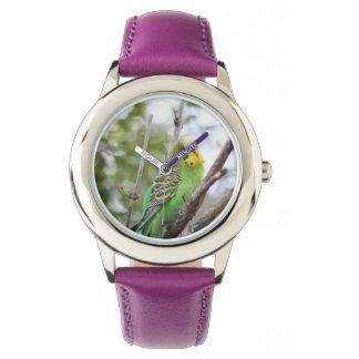 budgie wristwatches
