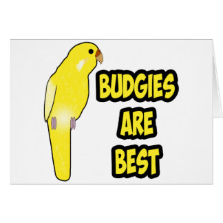 Budgies Are Best Card
