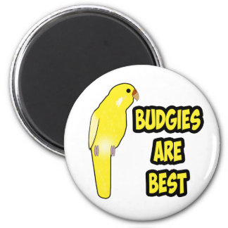 Budgies Are Best Fridge Magnet