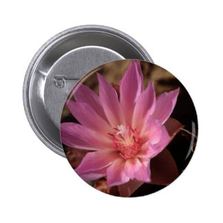 Bueatiful Pink Flower Pinback Button