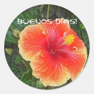 Buenos Dias Round Stickers
