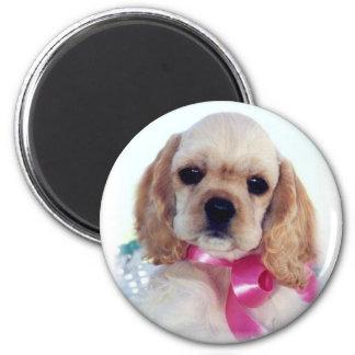 Buff Cocker puppy magnet