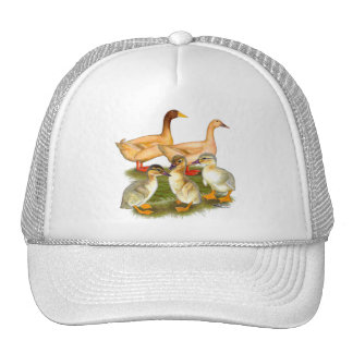 Buff Orpington Duck Family Cap