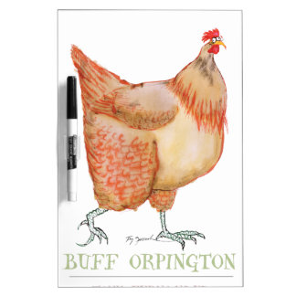Buff Orpington hen, tony fernandes Dry Erase Board