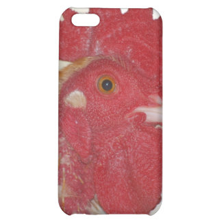 buff orpington rooster case for iPhone 5C