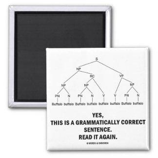 Buffalo (8 Times) Grammatically Correct Sentence Square Magnet